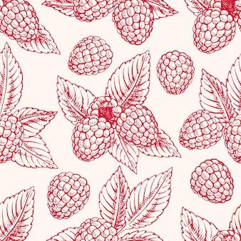 Netter nahtloser hintergrund mit reifen rosa himbeeren und blättern. handgezeichnete illustration