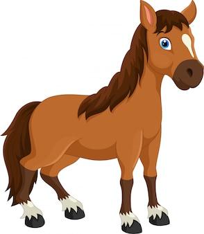 Netter pferdekarikatur