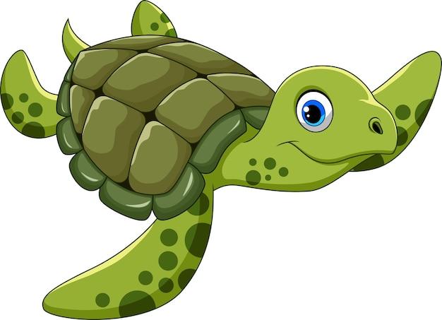 Netter schildkröten-cartoon