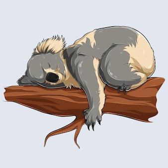 Netter schlafender koala in einem ast, der mit schatten und lichtern dargestellt wird