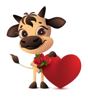 Netter stier, der herz und strauß des valentinstaggeschenks der rosen hält. isoliert auf weißer karikaturillustration