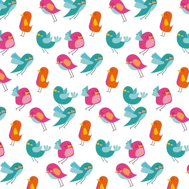 Netter vogel differents farbmuster-designweißhintergrund