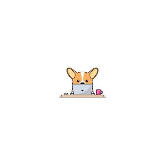 Netter waliser-corgihund, der an einem laptop arbeitet