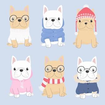 Netter welpe der französischen bulldogge in der winterstrickjackekostüm-modekollektion