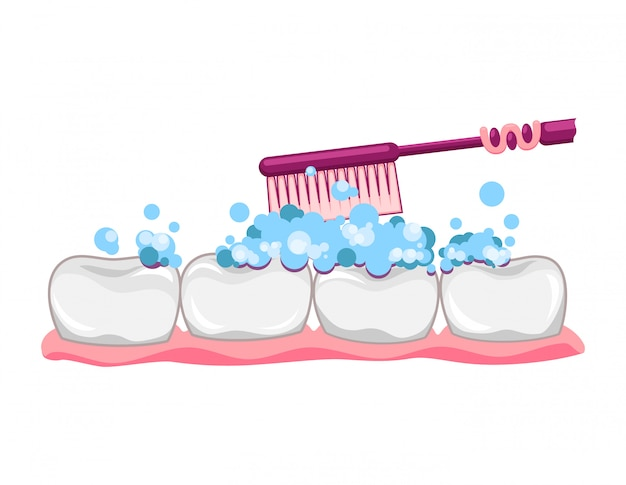Netter zahn mit zahnbürste und zahnpasta. saubere zähne putzen. zahnärztliche kinderbetreuung. zahnfleischprothese. moderne flache artkarikaturcharakterillustration