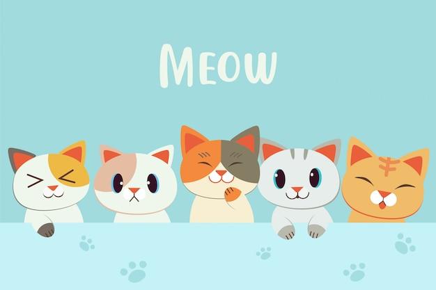 Nettes charakterkarikaturkätzchen mit meow text