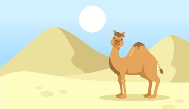 Nettes ein buckelkamel, das in der wüste geht. wilde dromedartier-zeichentrickfigur in der natur