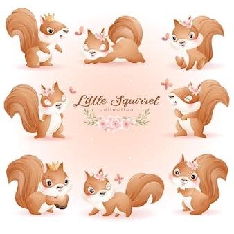 Nettes gekritzeleichhörnchen-posen mit blumenaquarellillustrationssatz