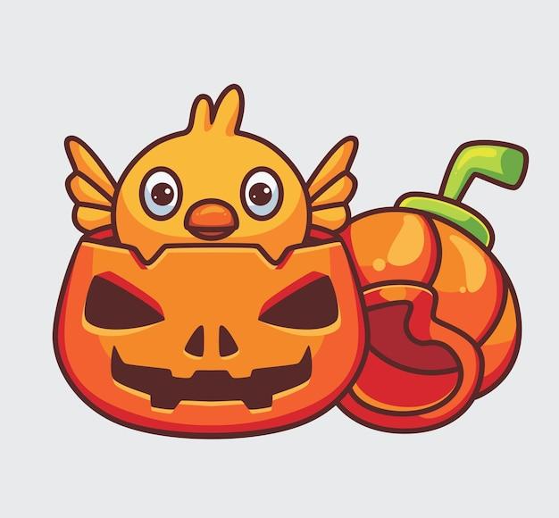 Nettes küken, das auf dem kürbis ausbrütet. isolierte cartoon-tier-halloween-illustration. flacher stil geeignet für sticker icon design premium logo vektor. maskottchen-charakter
