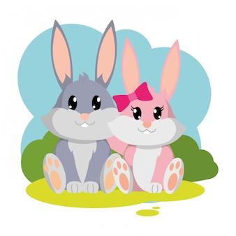 Nettes tier der bunten kaninchenpaare in der landschaft