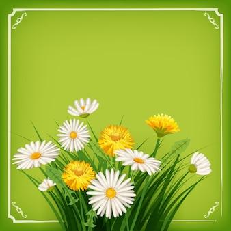 Neuer frühlingshintergrund mit gras, löwenzahn und gänseblümchen. vektor
