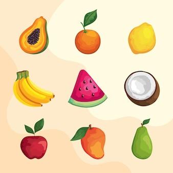 Neun tropische früchte