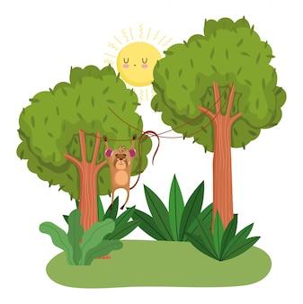 Niedliche affen, die bäume auf grünem wald hängen