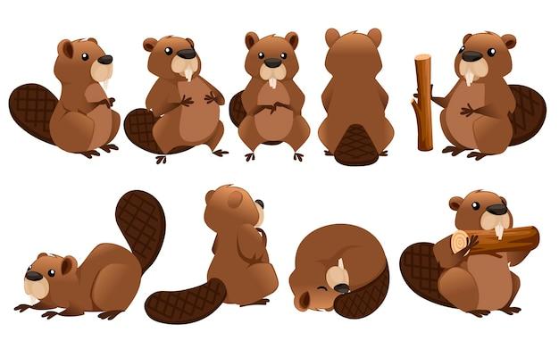Niedliche braune bibersammlung cartoon-charakter-design-illustration