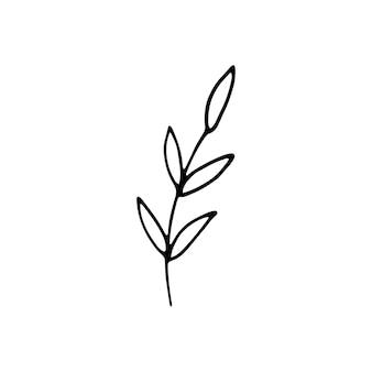 Niedliche einzelne handgezeichnete kräuterelemente. doodle-vektor-illustration für hochzeitsdesign, logo und grußkarte. isoliert auf weißem hintergrund.