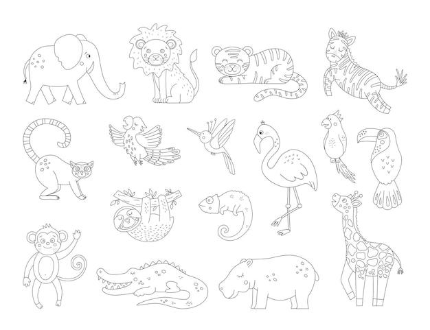 Niedliche exotische tiere und vögel umrisse. lustige tropische schwarzweiss-illustration. dschungelsommer skizze