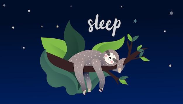 Niedliche faule trägheit, die auf einer niederlassung des tropischen baums in der nacht schläft. schlafart schriftzug. cartoon-stil.