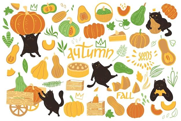 Niedliche illustration mit kürbissen und schwarzen katzen. herbst- oder herbstvektor-charakterdesign.