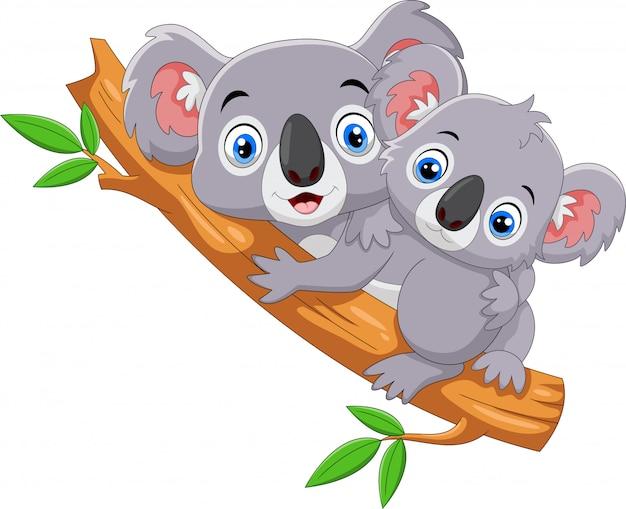 Niedliche koalakarikatur auf einem baum