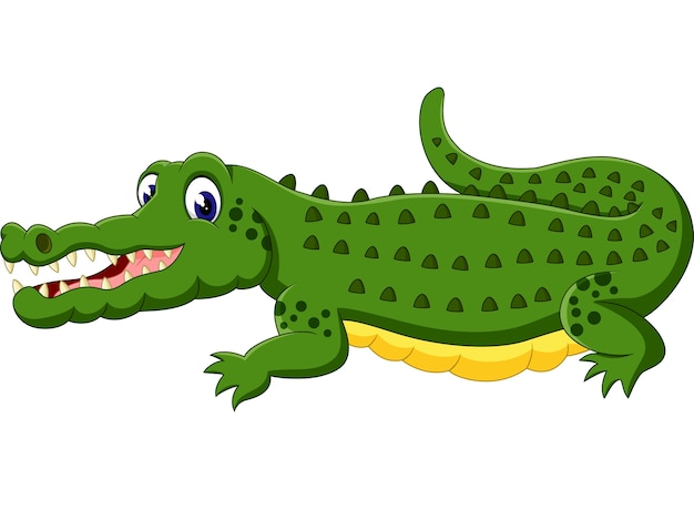 Niedliche krokodilkarikatur