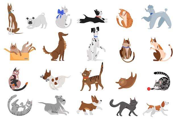 Niedliche lustige karikatur-haushunde und katzen setzen