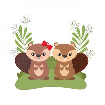 Niedliche paar streifenhörnchen mit kranz