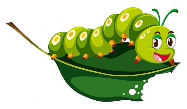 Niedliche raupe, die grünes blatt kaut