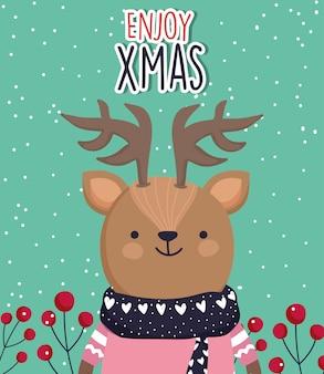 Niedliche rotwild der feier der frohen weihnachten mit strickjacke und schal
