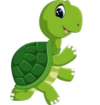 Niedliche schildkröte cartoon