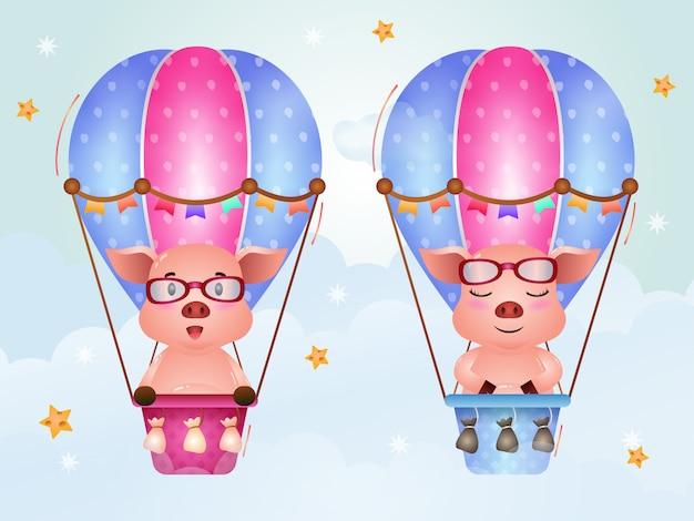 Niedliche schweine auf heißluftballon
