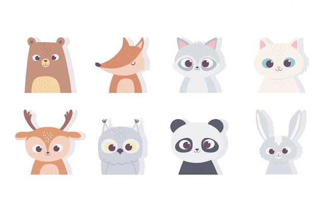 Niedliche tiere porträt gesicht panda bär fuchs katze kaninchen fuchs hirsch waschbär ikonen