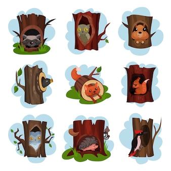 Niedliche tiere und vögel sitzen in der baumhöhle gesetzt, ausgehöhlte alte bäume mit fuchs, eule, igel, waschbär, specht, eichhörnchen tiere in cartoon illustrationen
