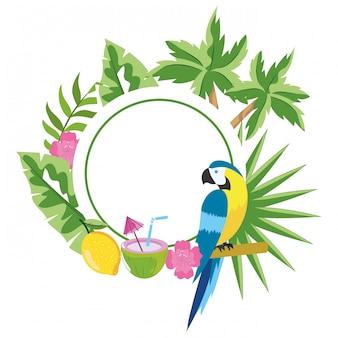 Niedliche tropische papageienkarikatur