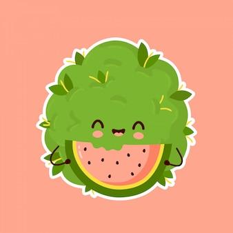 Niedliche unkraut marihuana knospe essen wassermelone.