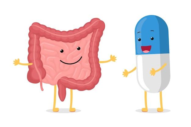 Niedlicher cartoon gesunder darm und smiley-medikamentenpille charakter bauchhöhle verdauung und