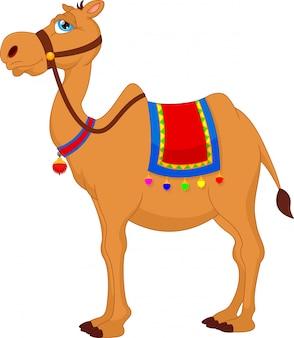 Niedlicher kamel-cartoon