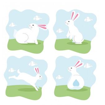 Niedlicher kaninchensäugetier-häschenkarikatur