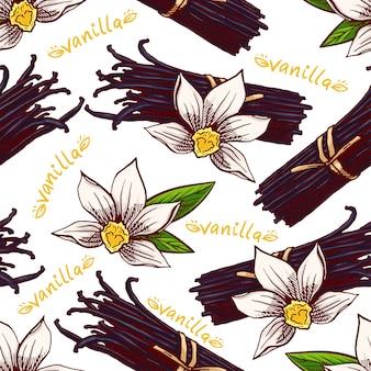 Niedlicher nahtloser hintergrund mit skizze vanille