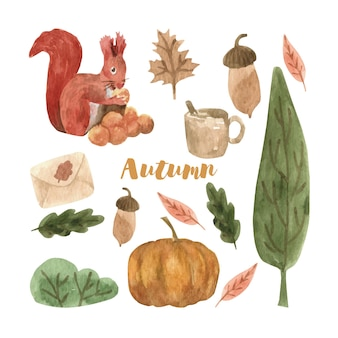 Niedliches herbst-aquarell-set mit blättern, pilzen, kürbis und eichhörnchen saisonales design