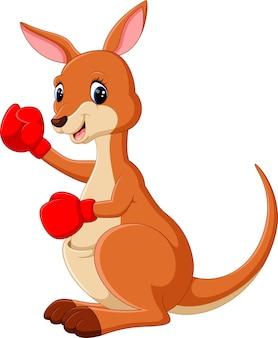 Niedliches känguru-boxen