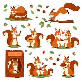 Niedliches tier des eichhörnchens, das in der tierwelt und im reizenden tierischen paarillustrationssatz des squiring-charakters auf weiß springt oder schläft
