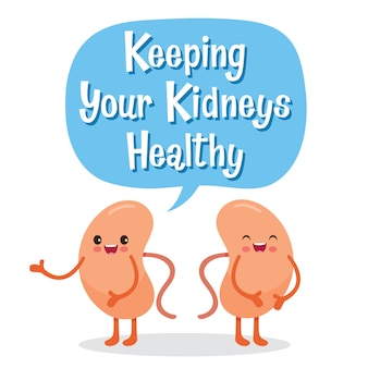 Nieren, menschliches inneres organ, zeichentrickfigur