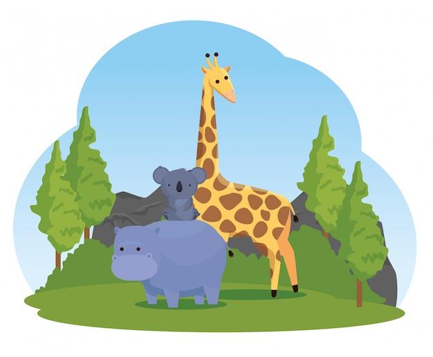 Nilpferd mit wilden tieren des koala und der giraffe