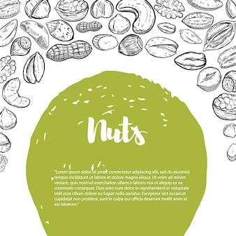 Nüsse. flyer vorlage mit rand von nüssen illustrationen. element für plakat, flyer ,. illustration