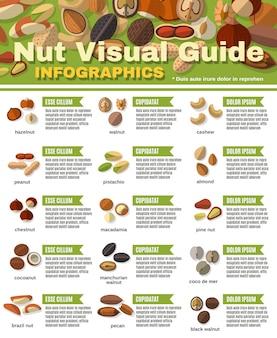 Nüsse infografiken set
