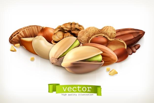 Nüsse, vektorillustration lokalisiert auf weiß