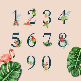 Nummerieren sie typografischen sommer des tropischen alphabetes mit betriebslaub