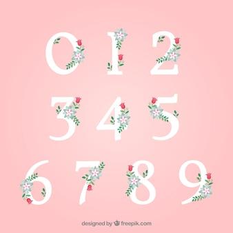 Nummernsammlung