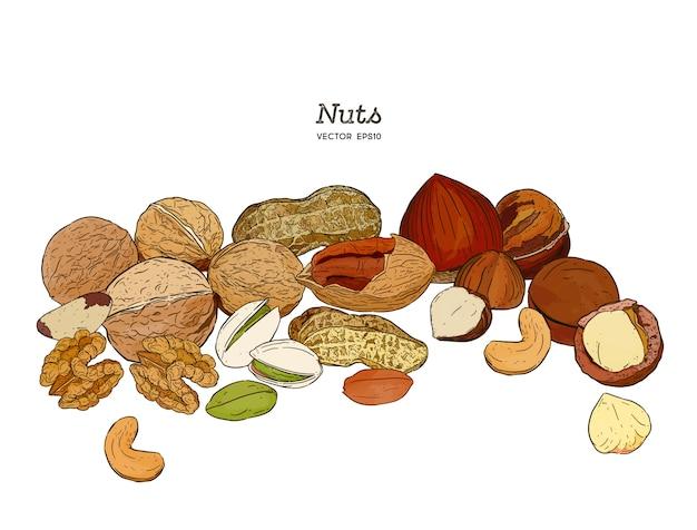 Nuts sammlung