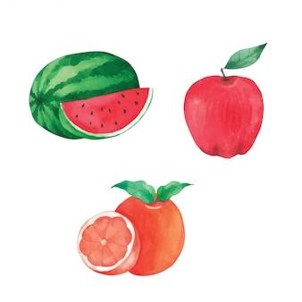 Obst handfarbe in aquarell sammlung